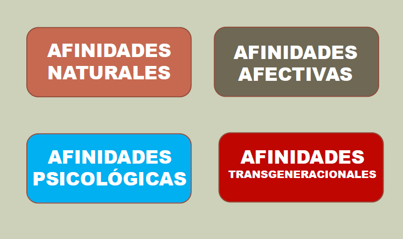 cuadro de afinidades transgenracionales